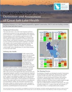Great Salt Lake report